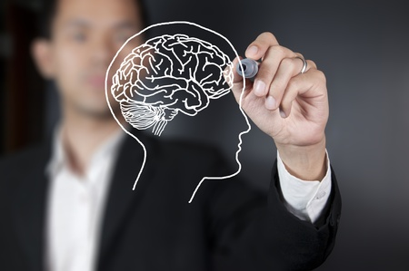 life science: Businessman drawing a brain