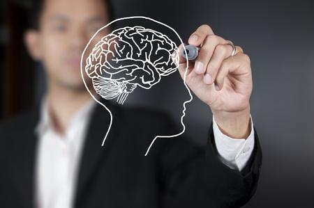 cerebro humano: Empresario dibujar un cerebro