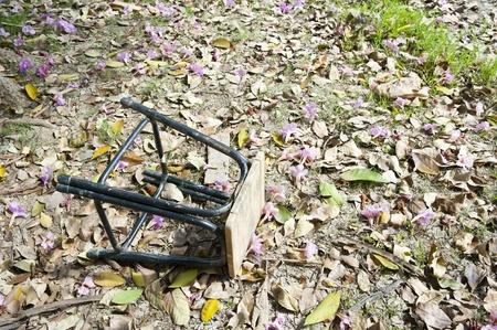 Old chair in garden photo
