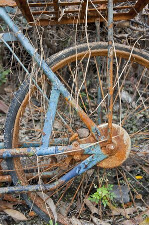 Rusty wheel of bicycle photo