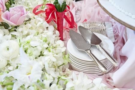 serving utensil: Kitchen untesil,serving utensil for cake