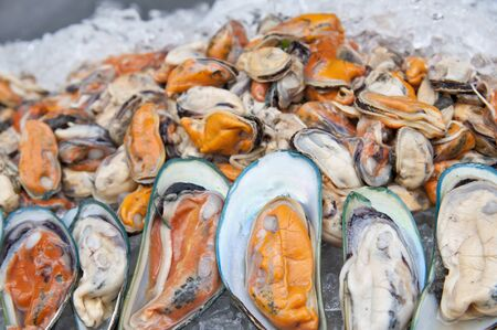 Display of fresh mussels for sale at a fish market