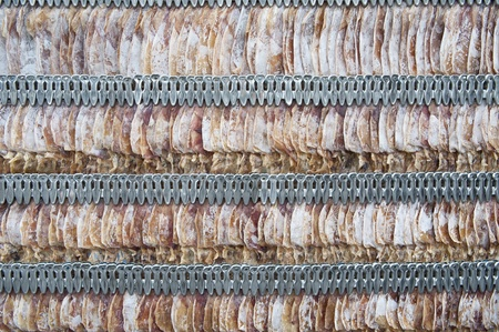 Dried squid, Thai food style Stock Photo