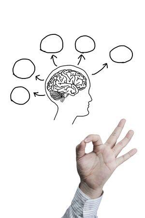 Brain thinking and hand symbol OK