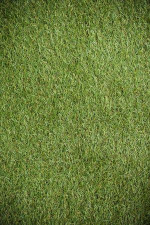 fake: Fake Grass Background