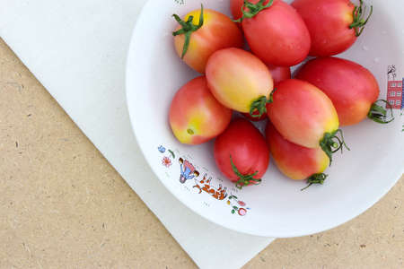 calico: Tomato on Calico Background