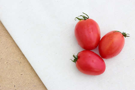 calico: Three Tomato on Calico Background Stock Photo