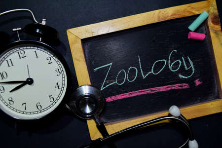 The words Zoology handwriting on chalkboard on top view. Alarm clock, stethoscope on black background. With education, medical and health concepts