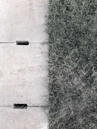 Black and white concept. Cement drain grate and green grass with abstract background 版權商用圖片