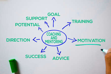 Coaching and Mentoring text with keywords isolated on white board background. Chart or mechanism concept. Stok Fotoğraf