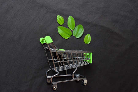 Shopping cart with leaves on black background. Healthy lifestyle concept Stock Photo