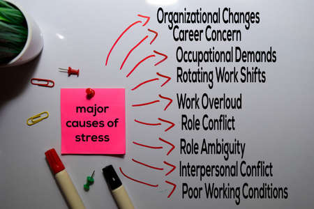 Major Causes of Stress Method text with keywords isolated on white board background. Chart or mechanism concept. Reklamní fotografie