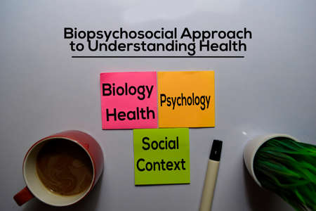Biopsychosocial Approach to Understanding Health Method text with keywords isolated on white board background. Chart or mechanism concept. Stok Fotoğraf