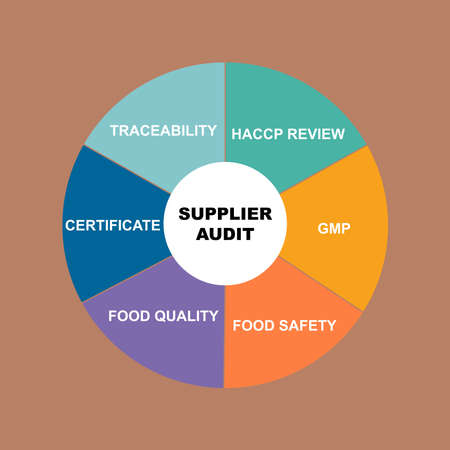Diagram of Supplier Audit concept with keywords. EPS 10 isolated on white background
