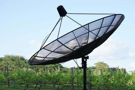 gape: big black satellite in gape farm