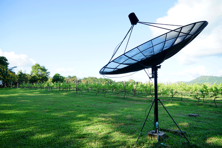 sattelite: sattelite dish in the wine field and sky Stock Photo
