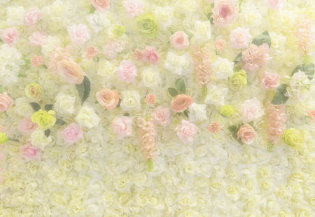 abstract rose: abstract wedding rose flower wall on soft filter - can use to display or montage on product