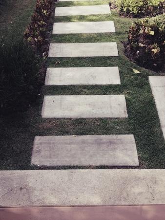 ways to go: Way in garden
