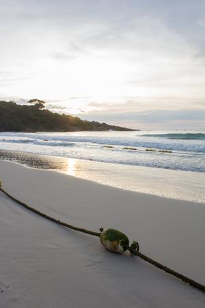 beach buoy: buoy on the beach at Samet island,Thailand when sun rise