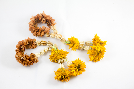 two dry garland Stock Photo