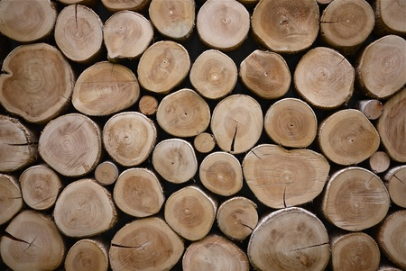 muur textuur gemaakt van hout log    Stockfoto