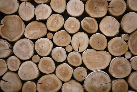 �wood: textura de pared de madera de registro