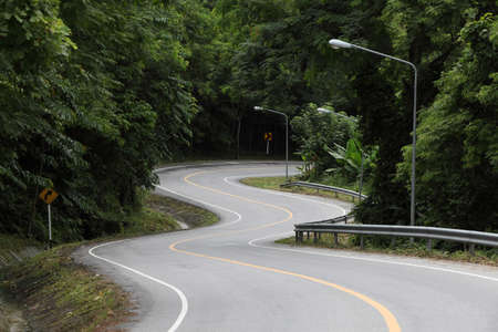 field stripped: Asphalt road sharp curve along with tropical forest