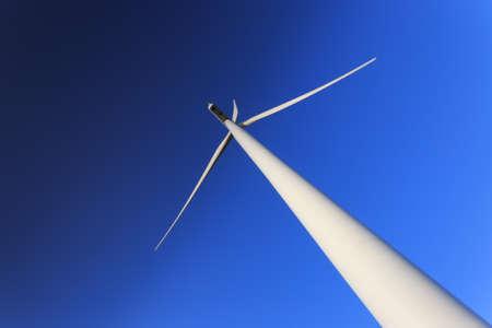 Wind turbines, Ecology  photo