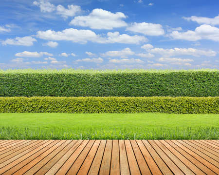 Green grass and wooden floor on hedge with cloudy sky background.