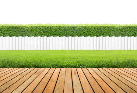 white picket fence: Lawn and wooden floor with hedge and White fence isolated.