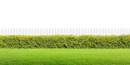 White fence and green grass on isolated. Stock Photo