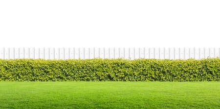 Witte hek en groen gras op geïsoleerde. Stockfoto