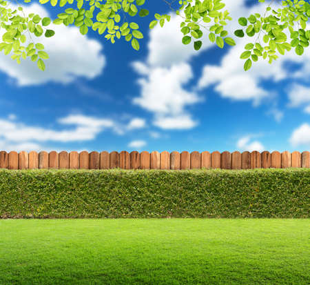 picket fence: Garden background.