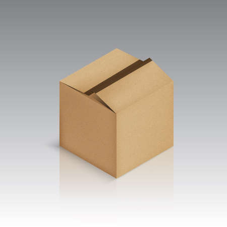 Cardboard boxvector illustration