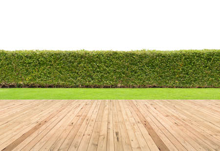 Lawn and wooden floor with hedge isolated. Stock Photo