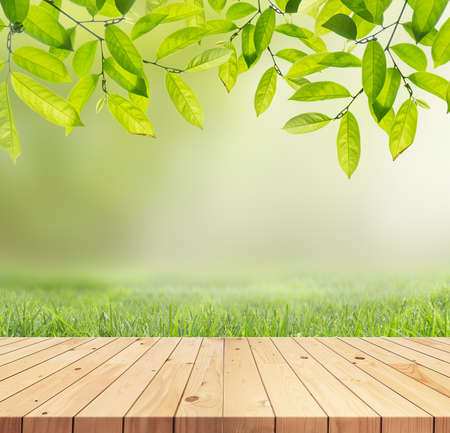 wood grass: Wood floor with Green leaves and Green grass on the blurred background