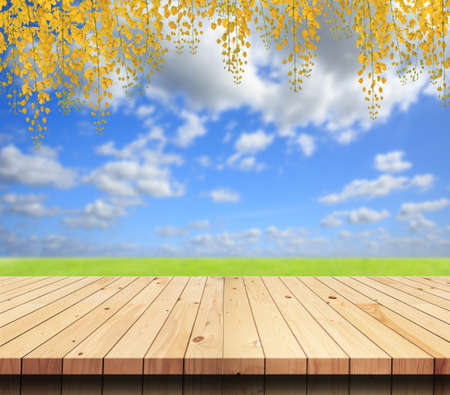 wood grass: Empty wooden deck table on garden Stock Photo