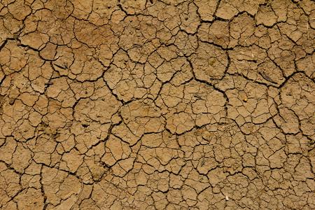 wallpapaer: Cracked soil background