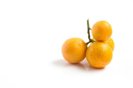 Orange Kumquat placed on whte background Stock Photo