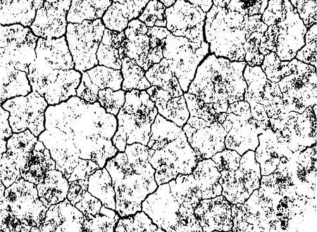 crack: Grunge black and white crack texture background