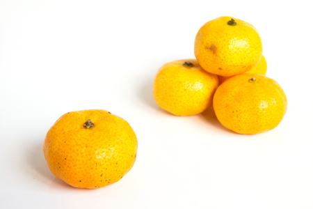 citrus reticulata: Group of mandarin orange (Citrus reticulata) on white background