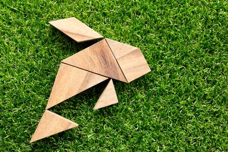 Wooden tangram puzzle in fish shape on green grass background