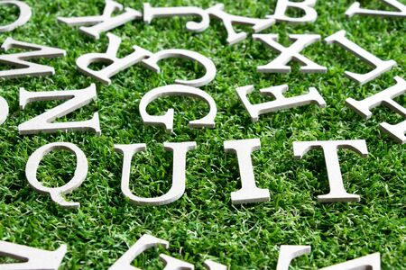 Wood alphabet in wording quit on artificial green grass background