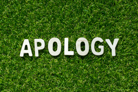 Wood alphabet in word apology on artificial green grass background