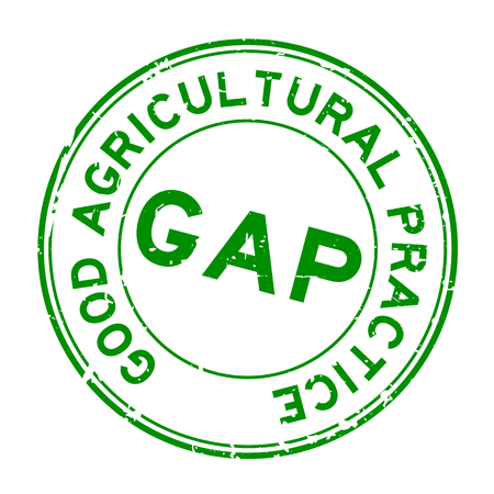 Grunge green GAP (abbreviation of good agricultural practice) word round rubber seal stamp on white background
