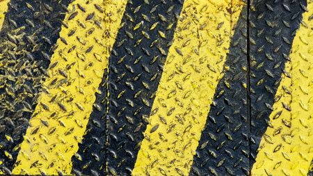 Black and yellow line paint on non-slip metal textured background