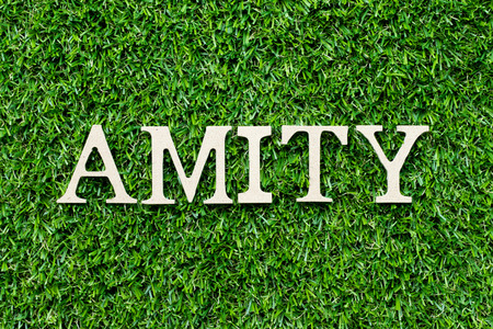 Wood letter in word amity on green grass background