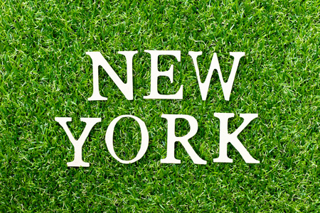Wood alphabet letter in word new york on green grass background