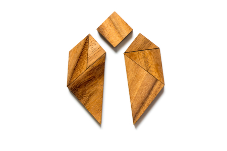 Wood tangram in bug or beetle shape on white background