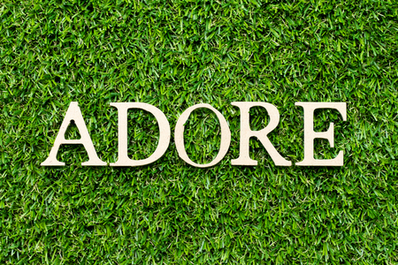 Wood alphabet letter in word adore on green grass background Banco de Imagens